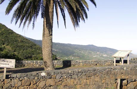 Typical taxi routes from the north of La Palma. From Los Sauces to La Tosca Viewpoint · Barlovento to trekking · Taxi in La Palma.