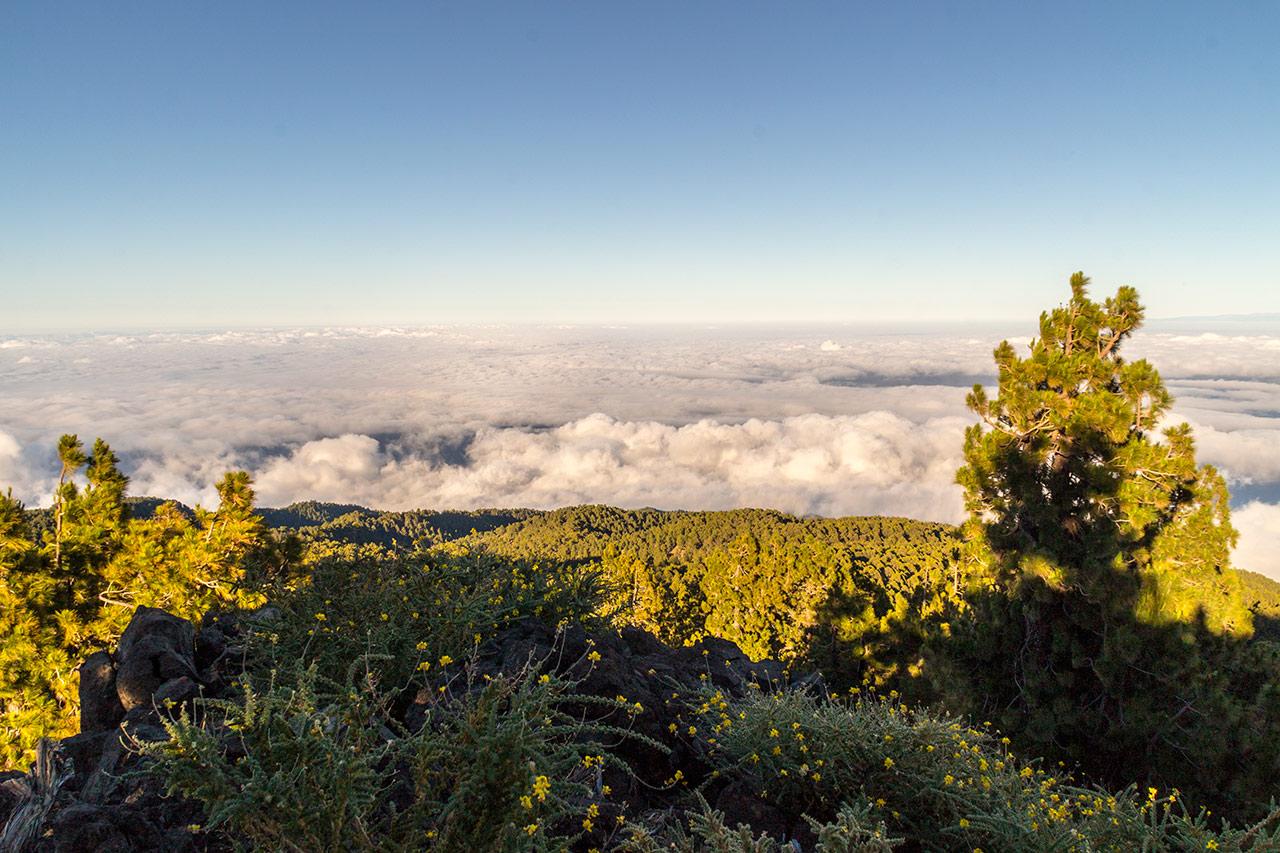 Mar de Nubes · Trayectos habituales en taxi del norte de La Palma. Desde Los Sauces hasta El Roque de Los Muchachos · Taxi en La Palma.
